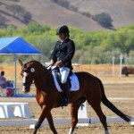 Kaitlin Veltkamp and Flashpoint D (Open Preliminary Rider) 5th place