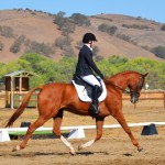 Natalie Kuhny and Case Closed II (Sonoma Saddle Preliminary Rider Championships) 6th place