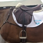 I love my Voltaire Saddle!